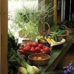 Ενημερωτική ημερίδα για την ποιότητα τροφίμων στις Σέρρες
