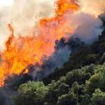 Υπό μερικό έλεγχο φωτιά στην Παλαιά Ζίχνη