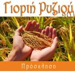 Γιορτή Ρυζιού 2013 στον Προβατά Σερρών