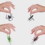 Φυσικοί και δραστικοί τρόποι για να διώξετε τα έντομα από το σπίτι σας !