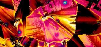 Τα αγαπημένα σου ποτά μέσα από το μικροσκόπιο!