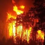 Πολύ υψηλός και σήμερα ο κίνδυνος πυρκαγιάς